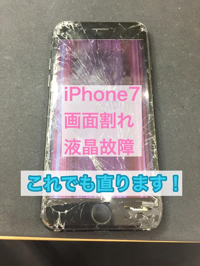 iPhone7_190711.jpg