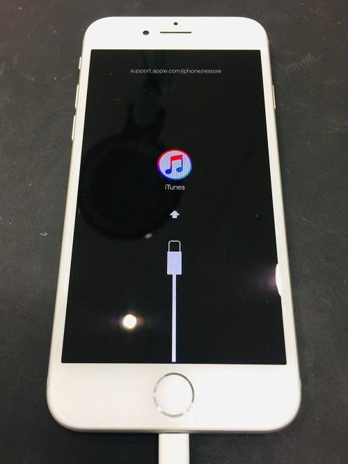 iPhone8_190527.jpg